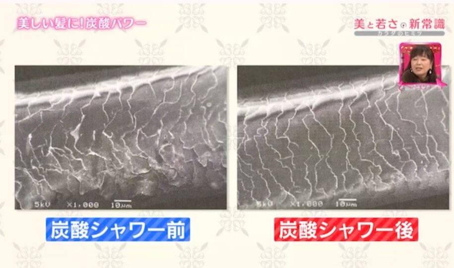 炭酸シャワー前と後のキューティクルの違い