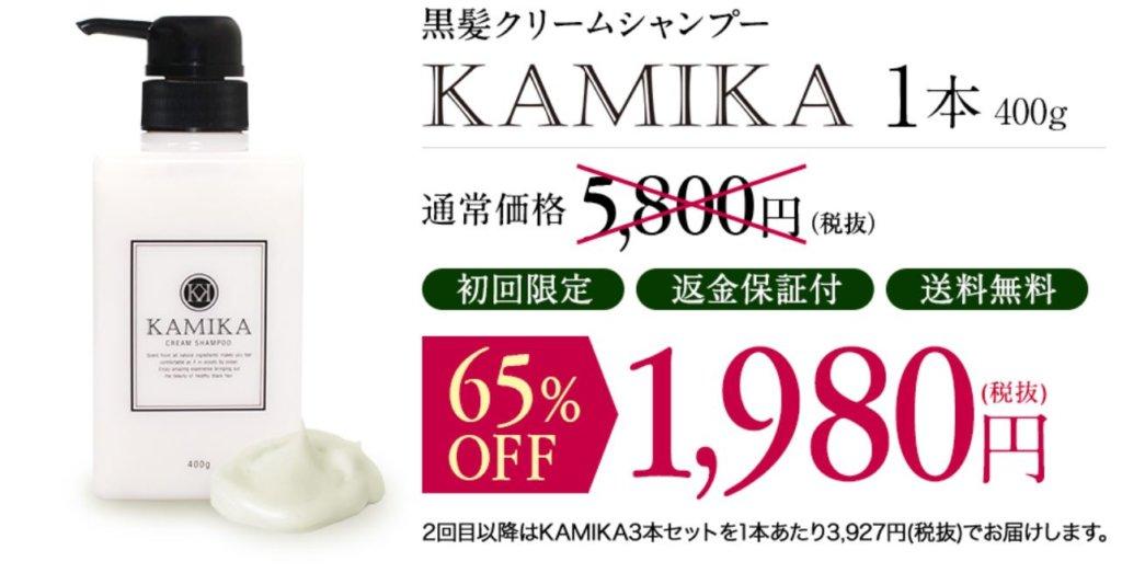 KAMIKA初回限定1980円