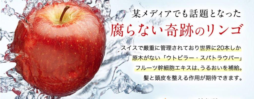 フルーツ肝細胞