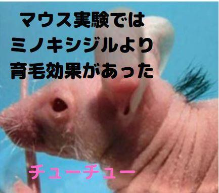 マウス実験ではミノキシジルより育毛効果があった
