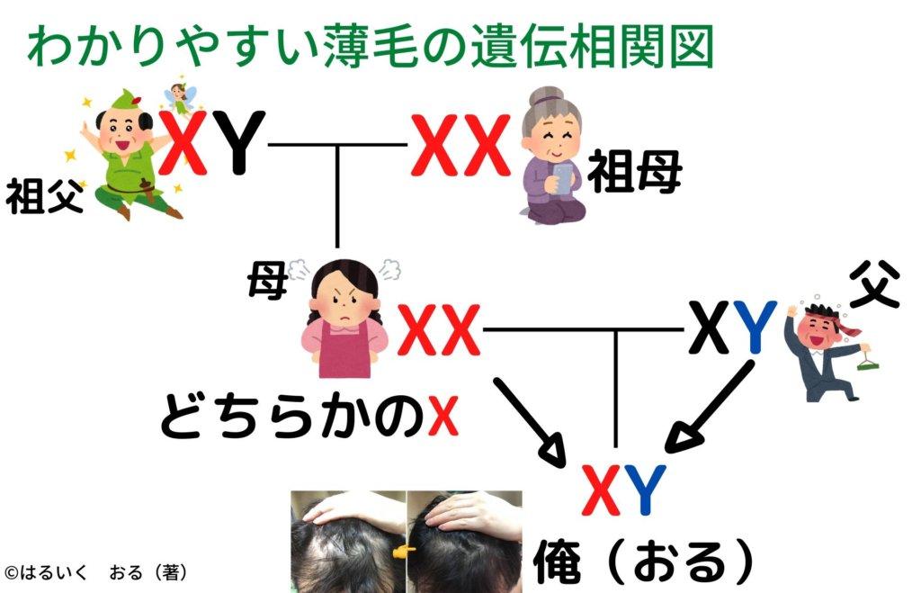 アンドロゲンレセプターの感受性は母方の家系をチェック