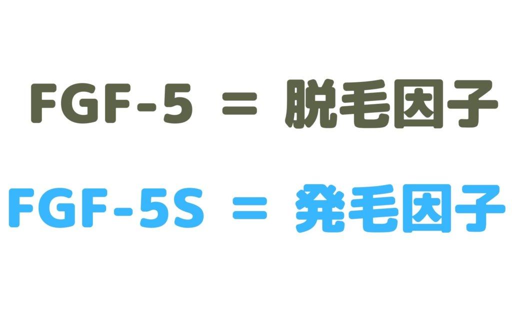 脱毛因子FGF-5に対抗する発毛因子FGF-5S
